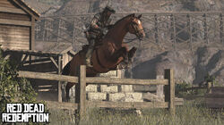 Wildlife.horsejump.jpg