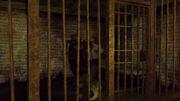 Rdr jailbird undead nightmare.jpg