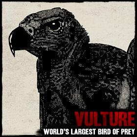 File:Wildlife vulture.jpg