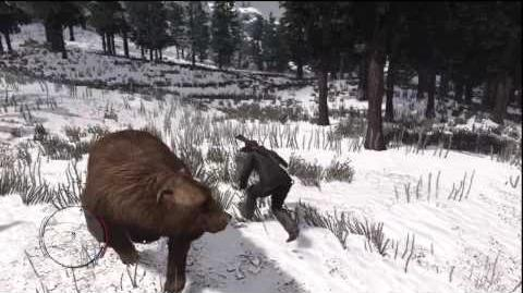 Red Dead Redemption - Knife fight with a Bear