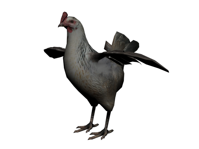 File:Gallina2.png