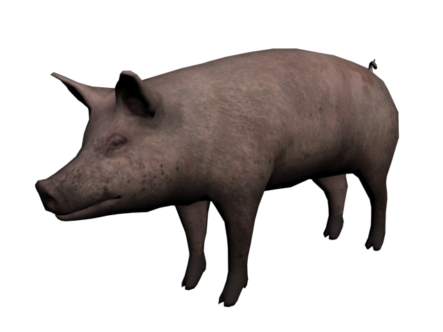 File:Cerdo.png