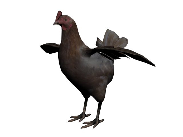 File:Gallina1.png
