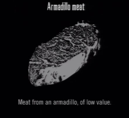 File:Animals Armadillo Meat.jpg