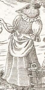 Honeysuckle (shrew)
