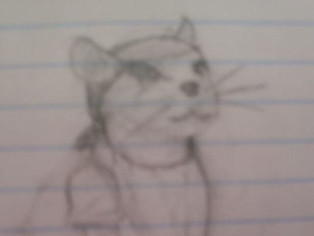 File:Corsair mouse.JPG