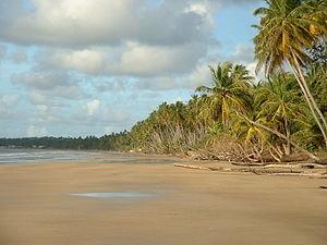 File:300px-Mayaro Beach; Trinidad & Tobago.jpg