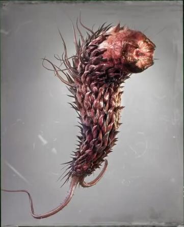 File:Las Plagas Organisms of War - Las Plagas.PNG