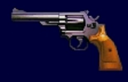File:CustomMagnumSurvivor2.jpg