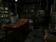 Taxidermy room (13)