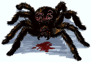 BH2-1.5 Spider