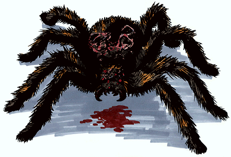 File:BH2-1.5 Spider.png