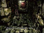 Entrance passage4