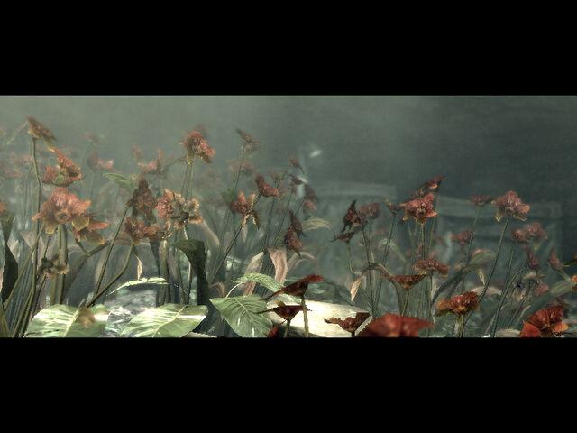 File:Underground garden cutscenes (10).jpg