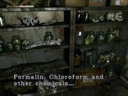 Taxidermy room (12)