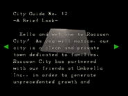 RE264 EX City pamphlet 02