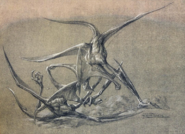 Bioraptor by Patrick Tatopoulos