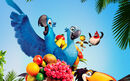 Rio-2-cartoon-wallpapers-and-images-download-wallpapers-movies-picture-rio-2-movie-2014