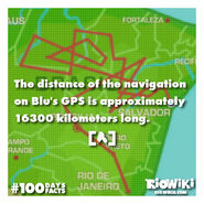 Rio-Wiki-100Days100Facts-073