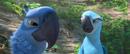 Blu 100-Jewel 100 58