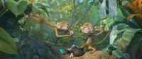 Rio 2 monkeys