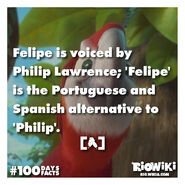 Rio-Wiki-100Days100Facts-016