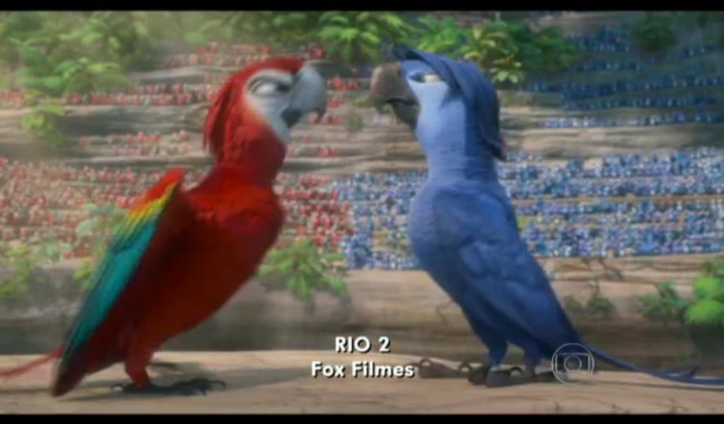 Blue Macaw Rio 2