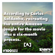 Rio-Wiki-100Days100Facts-036