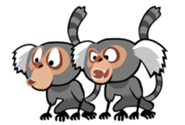 Angry Birds Marmosets