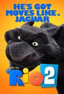 RIO2 Jaguar BS v5.0 web