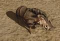 R2 Cr Warthog.png