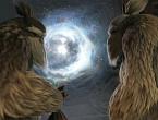 Portal-species
