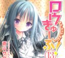 Ro-Kyu-Bu Light Novel 13