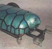 Terror turtle jpg