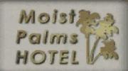 Moist palms logo 1