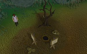 Lumby swamp cave old