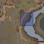 Desert Phoenix location