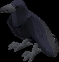 Raven (blue) pet