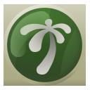 Karamja lodestone icon