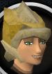 Guardian of Armadyl female chathead