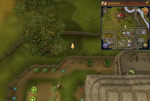 Scan clue East Ardougne north of Flying Horse Inn