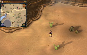 Scan clue Kharidian Desert north-east of Dominion Tower