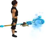 Necromancer's water staff equipped