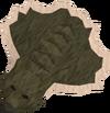 Bear pelt detail