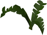 Fern (small plant) built