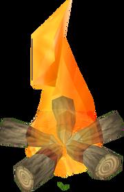 Oak Fire
