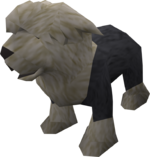 Sheepdog puppy (black) pet