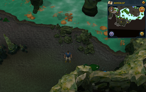 Scan clue Lumbridge Swamp Caves north-east of Tears of Guthix Cavern entrance