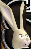 Rabbit chathead