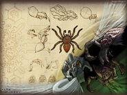 Thumb Spider Artwork